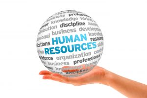 Hand holding a Human Resources Word Sphere on white background.